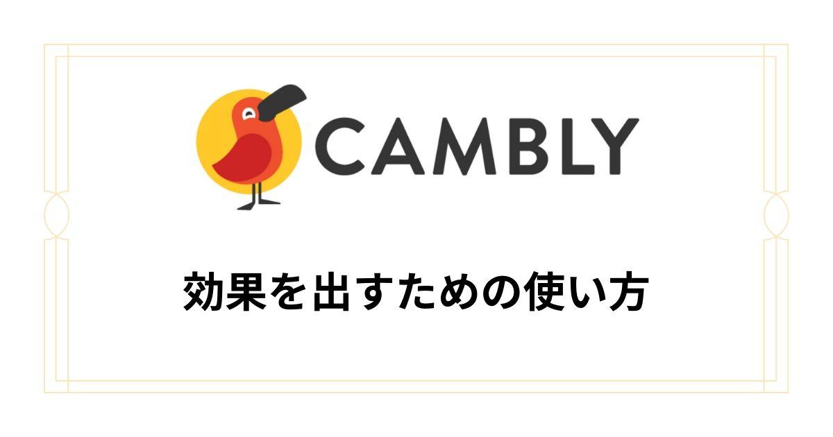 Camblyの使い方